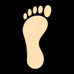 足を知る③